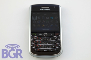 blackberry-niagra-1